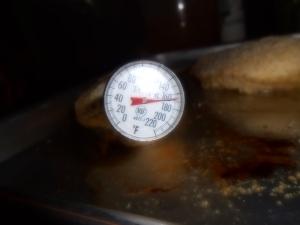 chicken with Arrabbiata sauce 013