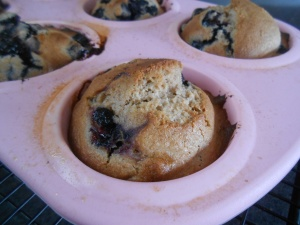 Lemon-Blueberry Muffins 019