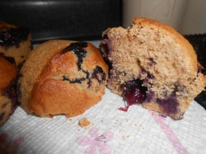 Lemon-Blueberry Muffins 020