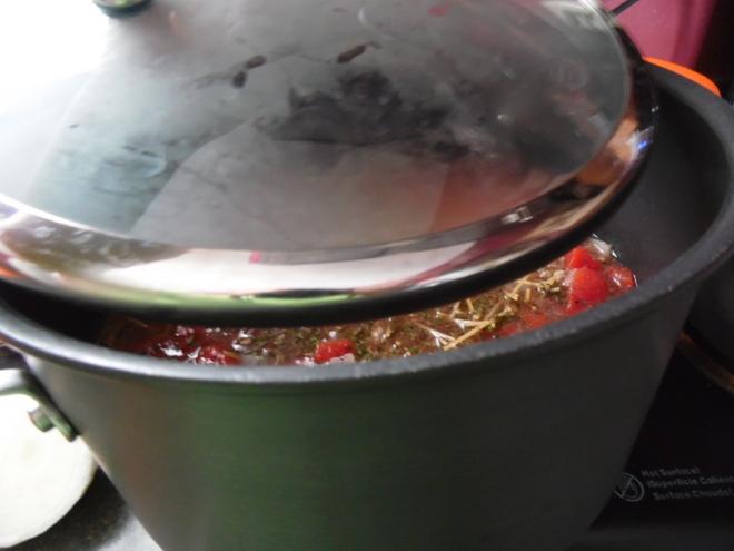 spaghetti soup 011