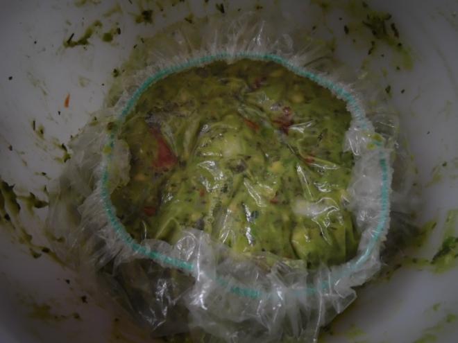guacamole 017